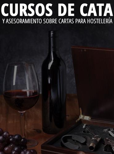 cursos_cata_santander-1